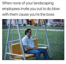 Landscaping Memes - national portrait gallery natnonal landscape gallery landscaping