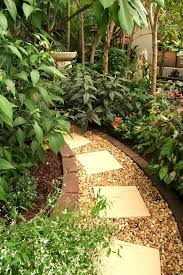 Tropical Backyard Designs Best 25 Tropical Backyard Ideas On Pinterest Tropical Garden