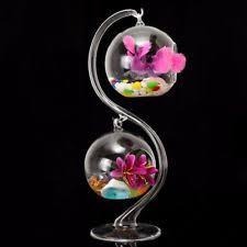 glass terrarium vases ebay