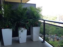 Cheap Planter Boxes by Tips For Using Large Outdoor Planters Front Yard Landscaping Ideas