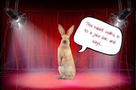 Silly Rabbit Meme - inspirational no 7 silly rabbit joke did you hear what happened to