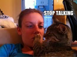 Talking Cat Meme - stop talking cat memes and comics