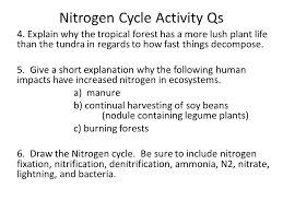 water carbon and nitrogen cycle worksheet free worksheets library