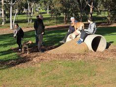 Dog Backyard Playground by Complete Dog Park Intermediate Dog Playground