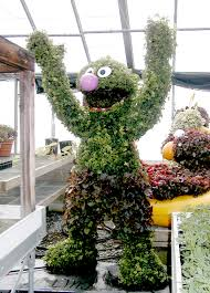 Real Topiary Trees For Sale - decorating bird topiaries for unique garden decoration ideas
