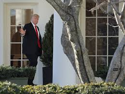 Gold Curtains White House by 9 Bizarre Descriptions Of Day To Day Operations In Trump U0027s White
