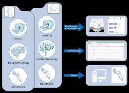 Home The Epilepsy Bioinformatics Study
