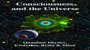 download consciousness and the universe quantum physics evolution