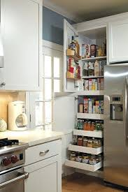 cool kitchen cabinet ideas kitchen pantry cabinet ideas sowingwellness co