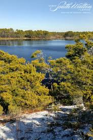 Florida nature activities images 45 best family beach activities seaside florida images on jpg