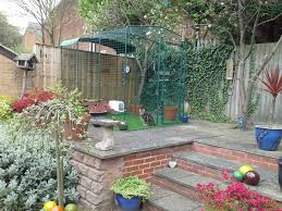 reviews for outdoor cat run cat products omlet