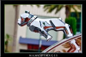 mack bulldog ornament by mahu54 on deviantart