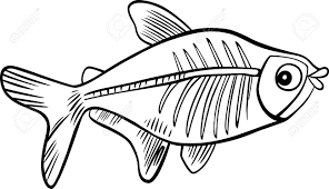 cartoon illustration ray fish coloring book royalty free