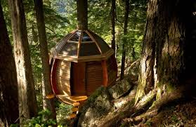 I Have Built A Treehouse - novice carpenter builds a secret illegal tree house on crown land