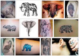 elephant meanings itattoodesigns com