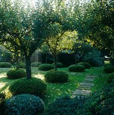 Home Interiors Apple Orchard Collection An Orchard Of Mixed English Apple Trees Each Trunk Encircled By