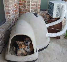 Dog Igloos Even Your Dogs Can Get Air Conditioning In Their Home Pass One