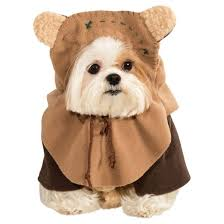Yorkie Halloween Costumes Pet Halloween Costumes Target