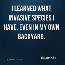 My Own Backyard Elizabeth Miller Quotes Quotehd