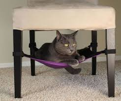 hammock bed under chair cat hammock bed u2014 nealasher chair the important of