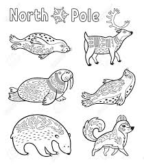 improved arctic animal coloring pages growth animals free printable