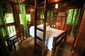 best tree houses go out on a limb costa rica u0027s best tree houses q costa rica