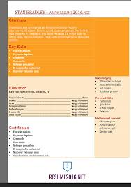 Resume In English Sample by Functional Resume Template Word