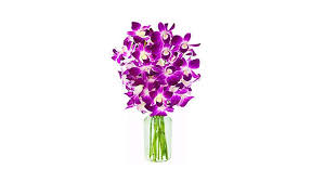 affordable flower delivery s day flowers top 10 best affordable bouquets heavy