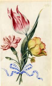 Ottoman Tulip by 33 Best Tulip Images On Pinterest Islamic Art Turkish Art And Tulip