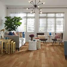 Laminate Flooring For Ceiling Shaw Floors Laminate Landscapes Plus Discount Flooring
