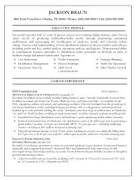 it management resume exles director resume exles 77 images operations director resume