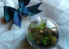 make your own terrarium ornament green gift guide