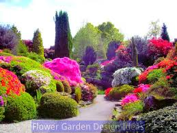 flower gardening for beginners six tips home decorations insight