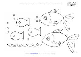 fish color picture fish family