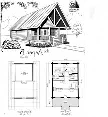 walkout house plans floor plan designer cottage built one micro walkout