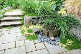 Indoor Rock Garden - tabletop water garden plants tabletop water garden ideas diy