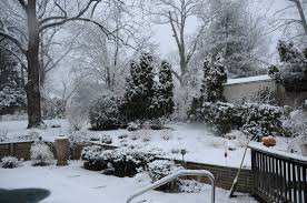 garden design garden design with winter wonders the remedy for
