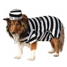 Halloween Costume Prisoner Prison Dog Halloween Costume Shipping Baxterboo