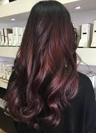 mahogany hair color chart the 25 best mahogany hair colors ideas on pinterest mahogany