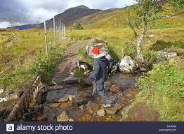 lady glenaffric a woman walker and her dog fording a stream in glen affric scottish