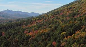 Arkansas Vegetaion images Arkansas mountains png