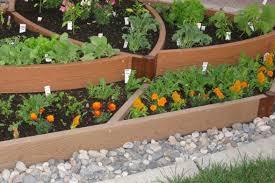 weeded backyard garden vegetable gardening and top vegetables