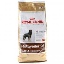 rottweiler essentials food treats flea treatments u0026 supplies