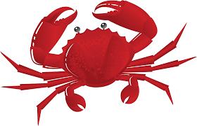 crab clipart clipartion com