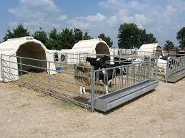 Plastic Calf Hutches Calf Hutch Collective Plastic Outdoor Multimax Calf Tel