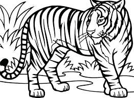 paw print sheets tiger coloring sheets large size of coloring tiger coloring pages