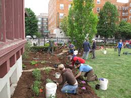 springfield urban rain gardens project connecticut river watershed
