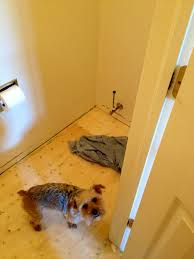 How Does Laminate Flooring Hold Up To Dogs Bathroom How To Floor Tile Courtney U0027s Craftin U0026cookin