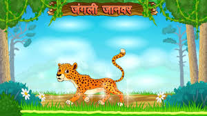 types of wild animals animated video for kids hindi video