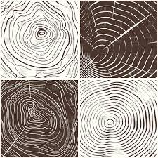 tree rings art images Wood rings texture or tree rings vector image vector artwork of jpg